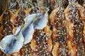 Pescados salados con sésamo Fotografía de archivo libre de regalías