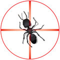 Pest Control Background Royalty Free Stock Photos