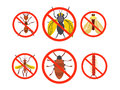 Pest Set Control.  harmful , beetles , insects. Vector illustration Royalty Free Stock Photo