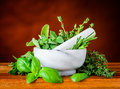 Pestle and Mortar with Green Basil, Mint and Rosemary Royalty Free Stock Photo