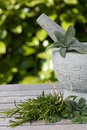Pestle and mortar and herbs Royalty Free Stock Photo