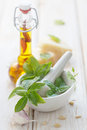 Pesto sauce ingredients Royalty Free Stock Photo