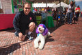 Pet adoption event with chilly a tie dyed poodle and celebrity participated in the reston virginia fiesta the dog is known as the Royalty Free Stock Photo