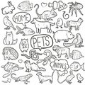 Pet Animals Home Traditional Doodle Icons Sketch Hand Made Design Vector Royalty Free Stock Photo