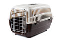 Pet carrier Royalty Free Stock Photo