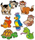 Pet cartoons collection Royalty Free Stock Photo