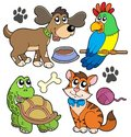 Pet collection Royalty Free Stock Photo