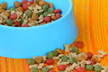 Pet food - dog food Stock Image