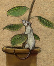 Pet rat white playing with potted plant pencil drawing on carton paper colored Royalty Free Stock Photography