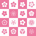 Petal patterns of plum blossom some set after the abstraction and artistic processing because the shape is similar petals they Royalty Free Stock Images