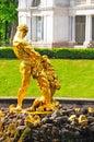 Petergof park. Fountains Samson Royalty Free Stock Photo