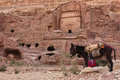 Petra jordan donkeys at the unesco world heritage site of Royalty Free Stock Photos