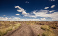 Petrified forest national park during sunny day arizona Stock Images