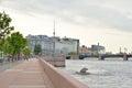 The Petrogradskaya Embankment.