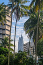 Petronas Twin Towers in between buildings and coconut trees Royalty Free Stock Photo