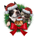 Pets holiday wreath with a dog cat and hamster wearing christmas hats as a symbol of veterinary medicine and pet store or animal Stock Images