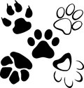 Pets paws with isolated background Stock Photos
