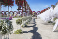 Petunias in the miracle garden and sculpture of cow dubai Stock Photos