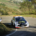 Peugeot 207 Rally Stock Image