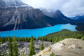 Peyto lake banff national park alberta canada Royalty Free Stock Photos