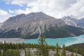 Peyto lake banff national park lakeis a famous glacier fed in alberta canada Stock Image
