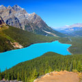 Peyto Lake of Canada Royalty Free Stock Photo