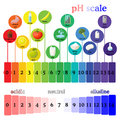 PH scale. Litmus paper color chart.