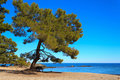 Phaselis, Turkey Royalty Free Stock Photography