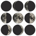 Phases of the moon vector illustration Stock Photography