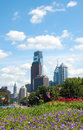 Philadelphia downtown skyline and flowers Stock Photography