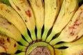 Philippines banana close up Royalty Free Stock Photo