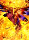 Phoenix bird rising out of the fire