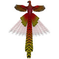 Phoenix firebird the is a mythical symbol of regeneration or renewal of life Stock Image