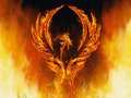 Phoenix rising a bird in flames with wings from a fiery furnace Stock Photo