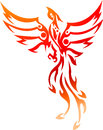 Phoenix tattoo tribal illustration of Royalty Free Stock Image