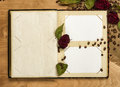 Photo album and dry red roses on coffee seeds Stock Images