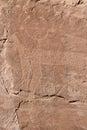 Photo of ancient petroglyphs