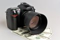 Photo camera with dollars on gray background Stock Image