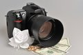Photo camera wedding boutonniere rings with money on gray background Royalty Free Stock Images