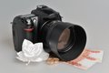 Photo camera wedding boutonniere rings with money on gray background Stock Images