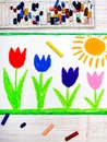 Photo of colorful hand drawing- beautiful tulip flowers and sun