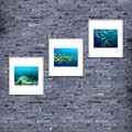 photo frame on brick wall texture or background, gray  color. de Royalty Free Stock Photo