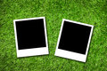 Photo frame on grass Royalty Free Stock Photo