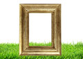 Photo frame on green grass nature Royalty Free Stock Photo