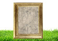Photo frame on green grass nature background Royalty Free Stock Photo