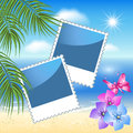Photo frames with sea landscape design palm flowers and butterfly Royalty Free Stock Photo