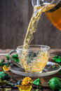 Photo of green nature tea Royalty Free Stock Photo