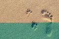 Human footprint beside dog footprint on the tropical beach Royalty Free Stock Photo