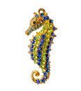 Photo of jewelry sea horse isolated on white background Royalty Free Stock Photo