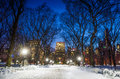 Photo of New York City buildings as viewed from Central Park Royalty Free Stock Photo